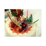 Birthdaycakes_christmas4