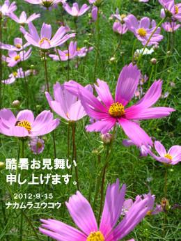 Dscf8359_5